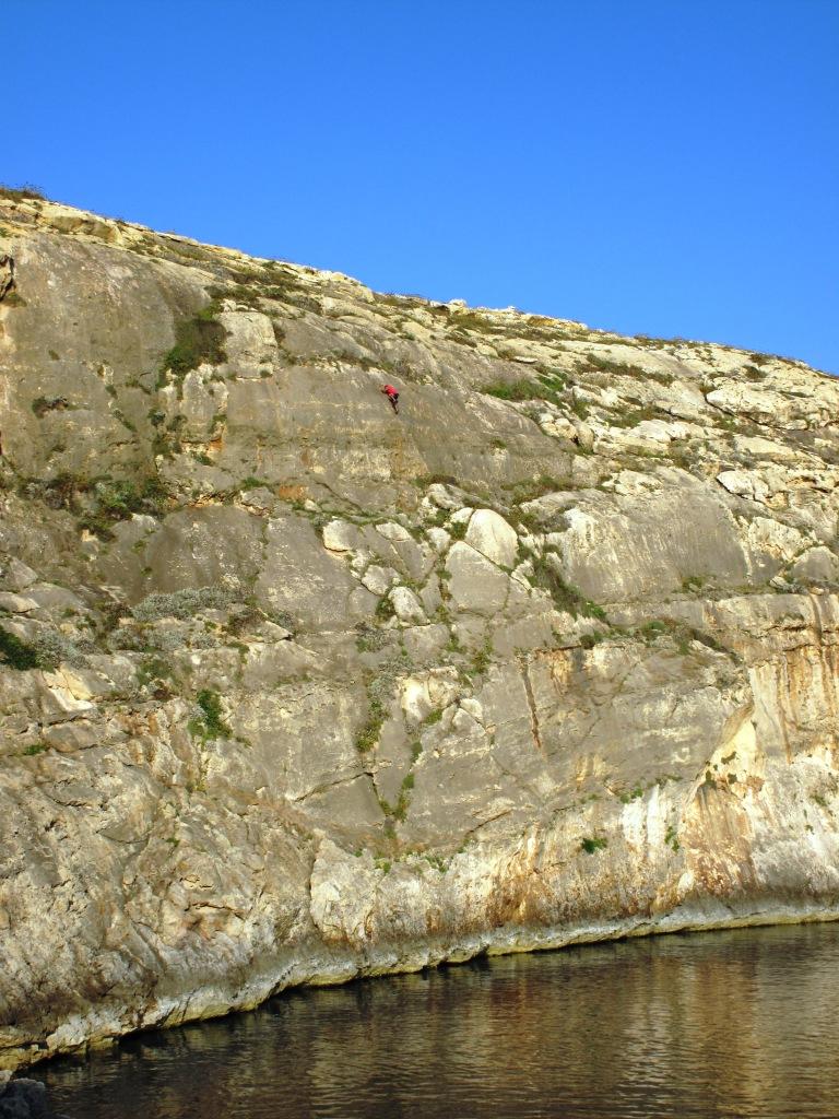 Gozo Canute